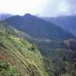 Mt Fubilan, Ok Tedi mine area in PNG ; 1982  (E Medley)