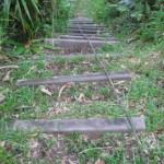 IMG_2098Am. Samoa  Feb 2010  (E Medley)